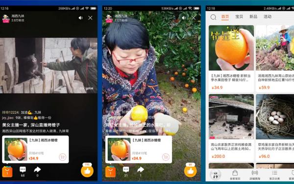 Đỉnh hơn bà Tân Vlog, lão nông Trung Quốc livestream một lần bán hết 1000 tấn cam - Ảnh 3.