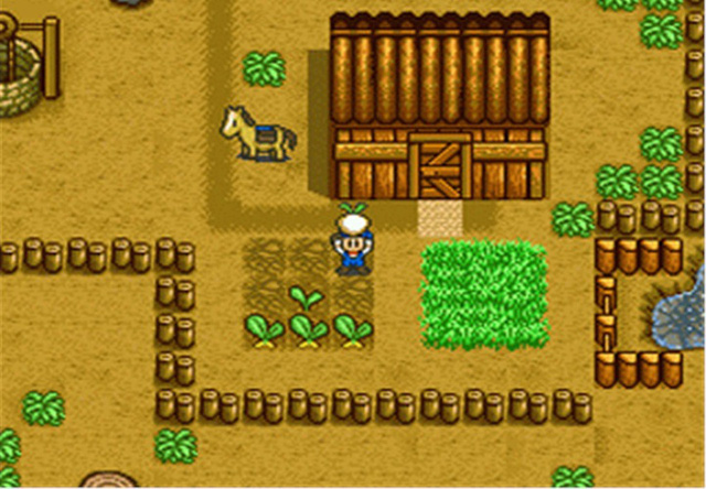 Đôi trẻ mê Harvest Moon gây bất ngờ với màn cầu hôn ngay tại hội chợ game