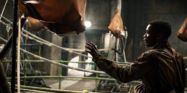Tết thử cảm giác mạnh với loạt phim kinh dị dành cho những người thích… zombie xem sao - Ảnh 2.