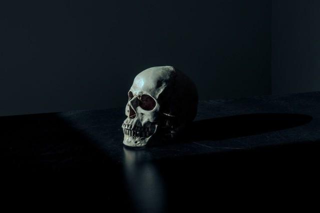 Hiện tượng tiên tri về cái chết của mình qua giấc mơ có thể được lý giải hay không? - Ảnh 2.