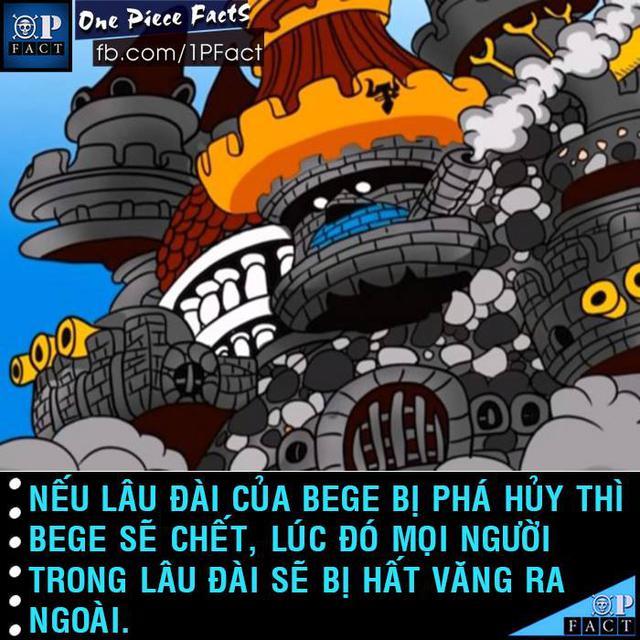 Đầu năm mới, cùng nhìn lại 20 fun facts thú vị trong truyện tranh One Piece - Ảnh 8.