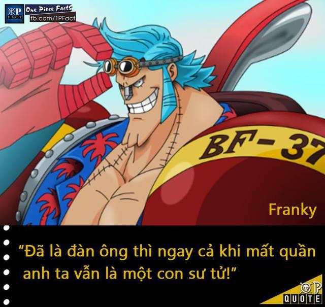 Đầu năm mới, cùng nhìn lại 20 fun facts thú vị trong truyện tranh One Piece - Ảnh 10.