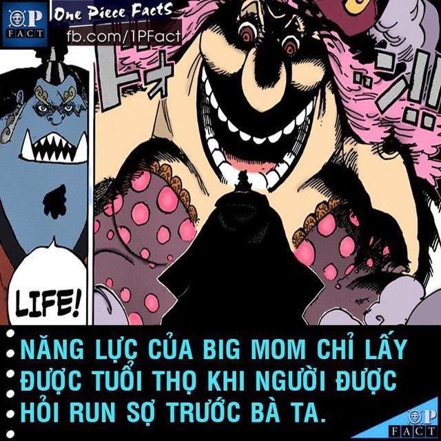Đầu năm mới, cùng nhìn lại 20 fun facts thú vị trong truyện tranh One Piece - Ảnh 18.