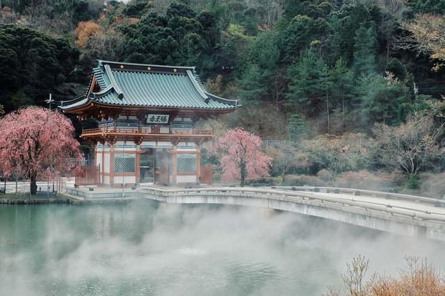 Tìm hiểu về búp bê Daruma - biểu tượng may mắn nổi tiếng hàng đầu Nhật Bản - Ảnh 8.