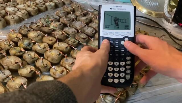 Xuất hiện thanh niên dùng 770 miếng khoai tây bị mốc để… chiến Doom - Ảnh 1.