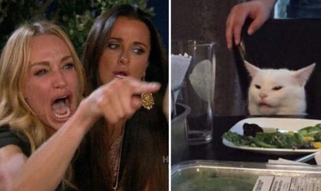 Meme cô gái chửi con mèo bắt nguồn từ đâu? - Ảnh 1.