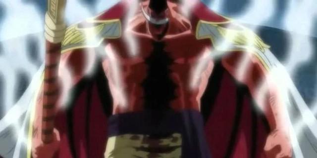 Những mẩu truyện ngắn và các chi tiết thú vị mà fan có thể bỏ qua nếu chỉ xem mỗi phiên bản Anime của One Piece - Ảnh 2.