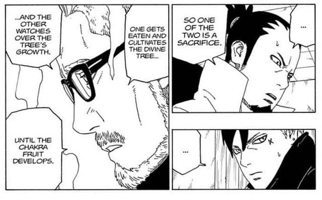 Boruto: Hé lộ sự thật về gia tộc Otsutsuki và lý do Kaguya phản bội Isshiiki - Ảnh 2.
