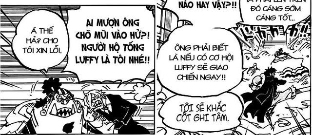 One Piece Chap 993: Những chi tiết thú vị có thể bạn đã bỏ qua khi đọc truyện (P2) - Ảnh 3.
