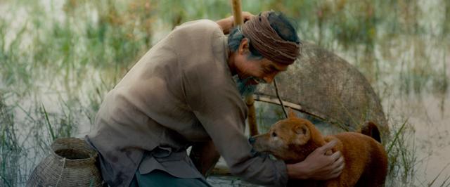 Vừa xuất hiện, hình ảnh Cậu Vàng khiến dân mạng tranh cãi: Trông không có vẻ gì đói nghèo, khổ sở - Ảnh 4.