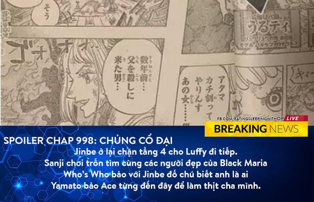One Piece 998: Marco đề nghị đưa băng Mũ Rơm tới chỗ Kaido, Sanji sướng rơn vì được gái đẹp vây quanh - Ảnh 6.