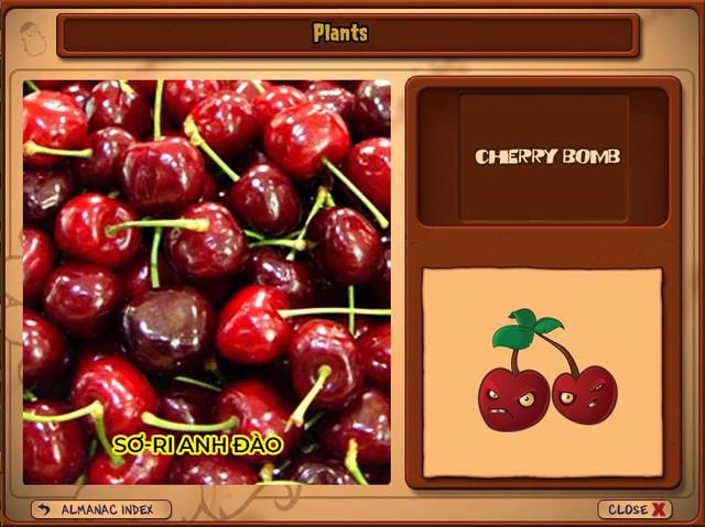 Nguyên mẫu đời thực của những loài cây đáng gờm nhất trong Plants vs. Zombies - Ảnh 3.