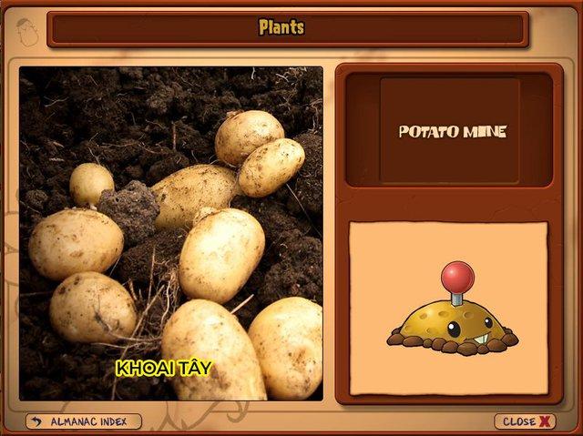 Nguyên mẫu đời thực của những loài cây đáng gờm nhất trong Plants vs. Zombies - Ảnh 5.
