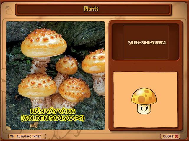Nguyên mẫu đời thực của những loài cây đáng gờm nhất trong Plants vs. Zombies - Ảnh 8.