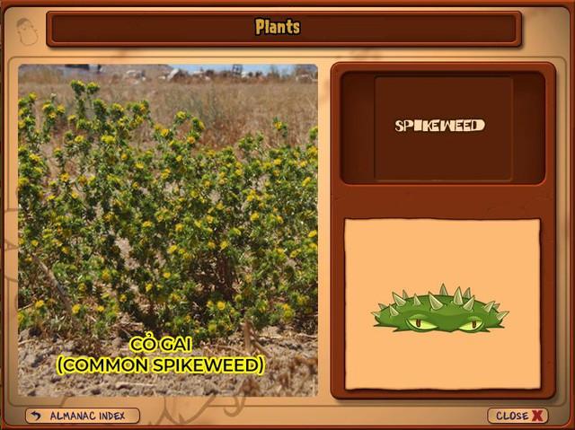 Nguyên mẫu đời thực của những loài cây đáng gờm nhất trong Plants vs. Zombies - Ảnh 12.