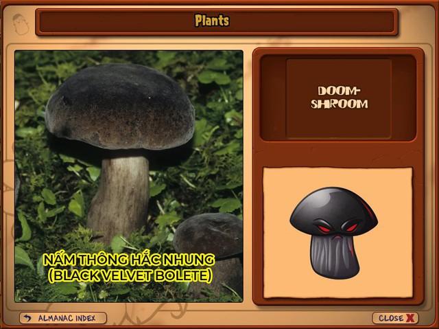 Nguyên mẫu đời thực của những loài cây đáng gờm nhất trong Plants vs. Zombies - Ảnh 14.