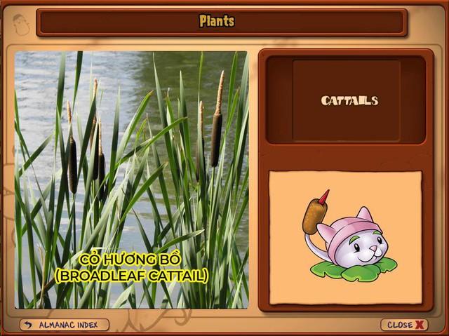 Nguyên mẫu đời thực của những loài cây đáng gờm nhất trong Plants vs. Zombies - Ảnh 16.