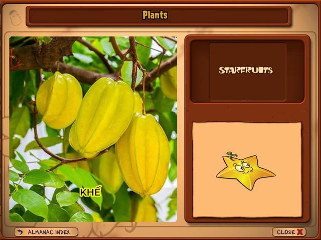 Nguyên mẫu đời thực của những loài cây đáng gờm nhất trong Plants vs. Zombies - Ảnh 18.