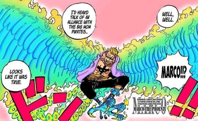 Dự đoán One Piece chap 998: Marco cõng Zoro tấn công King Hỏa Hoạn, Kaido đe dọa người dân Wano? - Ảnh 2.