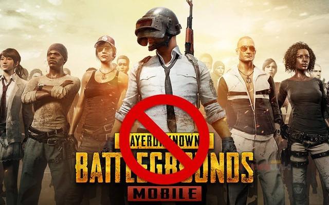 Luật sư Ấn Độ yêu cầu chính quyền cấm PUBG Mobile - Ảnh 1.
