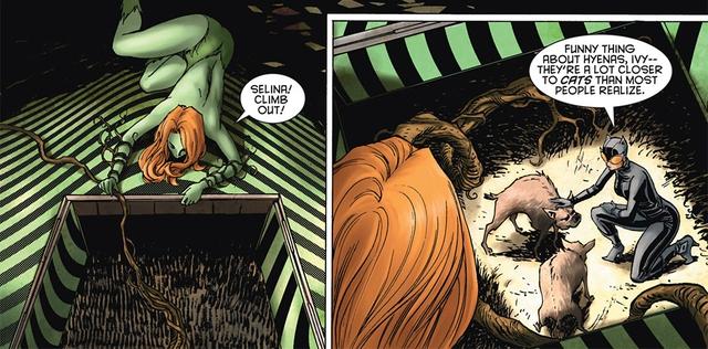 Birds of Prey: Những sự thật mà bạn chưa biết về linh cẩu Bruce và con hải ly nhồi bông của Harley Quinn - Ảnh 3.
