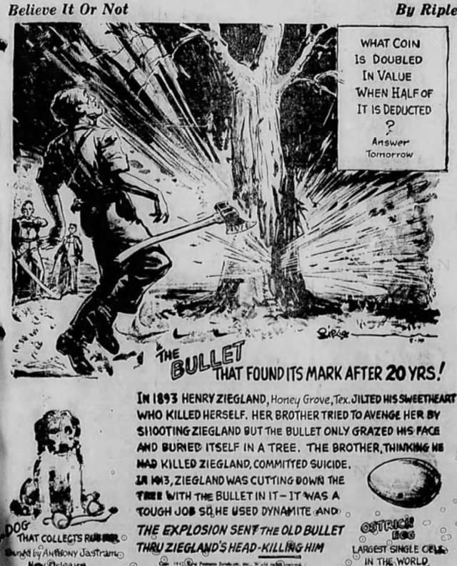 Chuyện về viên đạn kiên nhẫn suốt 20 năm trong thân cây, cuối cùng cũng thực hiện được sứ mệnh ám sát - Ảnh 1.