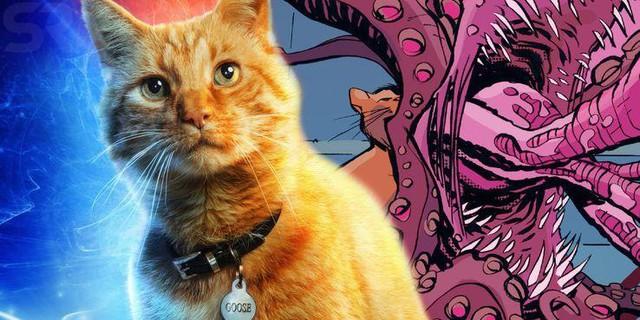 Captain Marvel: 10 điều fan mong muốn nhìn thấy nhất trong phần phim mới về chị đại Marvel (P.1) - Ảnh 5.