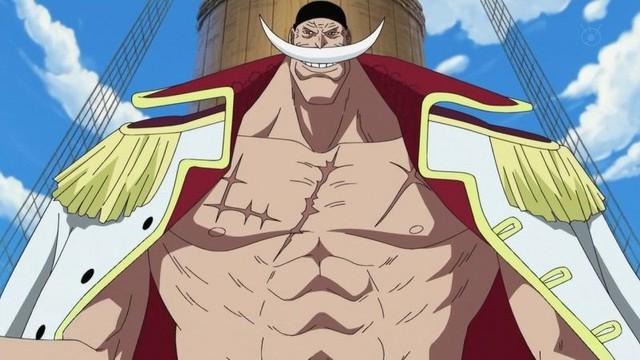 One Piece: Điểm lại các vết sẹo vang dấu 1 thời của các Hoàng Đế ở Tân thế giới - Ảnh 3.