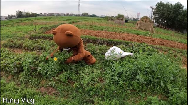 Bà Tân Vlog lại bị chê diễn sâu trong video cắt hết ruộng rau của cậu con trai - Ảnh 2.