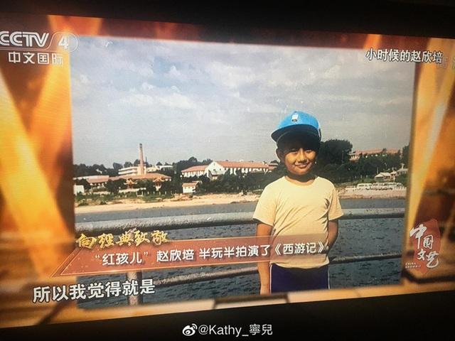 Cuộc sống hiện tại của Hồng Hài Nhi: Là đại gia trăm tỷ, ngoại hình phát tướng không nhận ra - Ảnh 4.