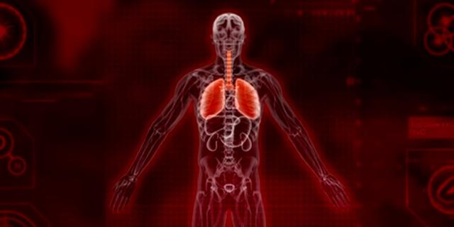 Chế độ mới của Plague Inc. sẽ cho phép người chơi giải cứu thế giới khỏi dịch bệnh, thay vì phá hủy nó - Ảnh 3.