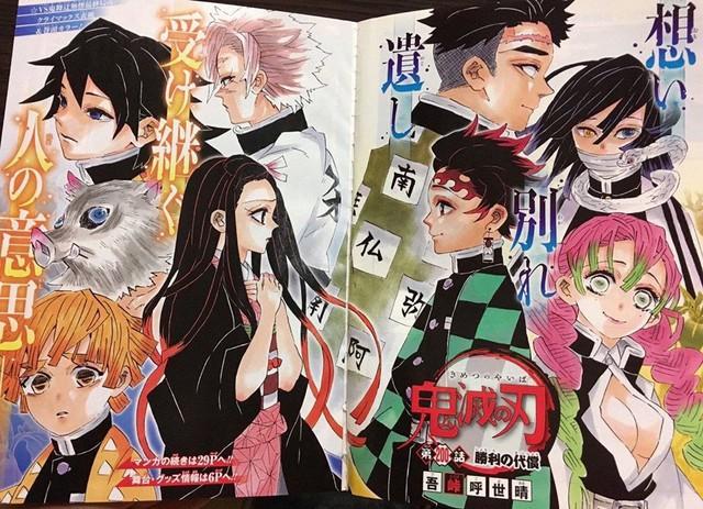 Kimetsu no Yaiba chương 200: Muzan bị đánh bại, hàng loạt nhân vật chính hy sinh - Ảnh 1.