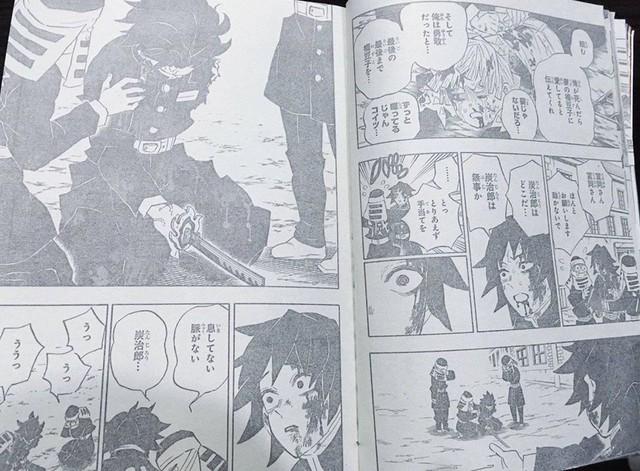 Kimetsu no Yaiba chương 200: Muzan bị đánh bại, hàng loạt nhân vật chính hy sinh - Ảnh 5.