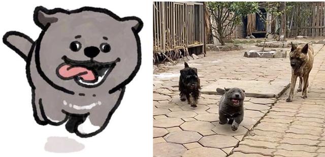 Hiện tượng mạng Nguyễn Văn Dúi được họa sĩ TQ tặng hẳn bộ ảnh chibi siêu cute - Ảnh 7.