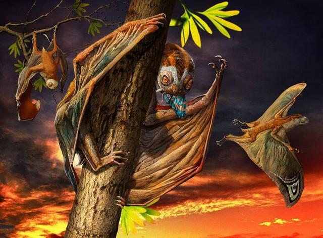 Luôn treo mình lộn ngược trên cây như loài dơi, đây nhất định là loài thằn lằn bay cổ đại kỳ lạ nhất từng tồn tại ở Trung Quốc Photo-1-15836868102441528499064