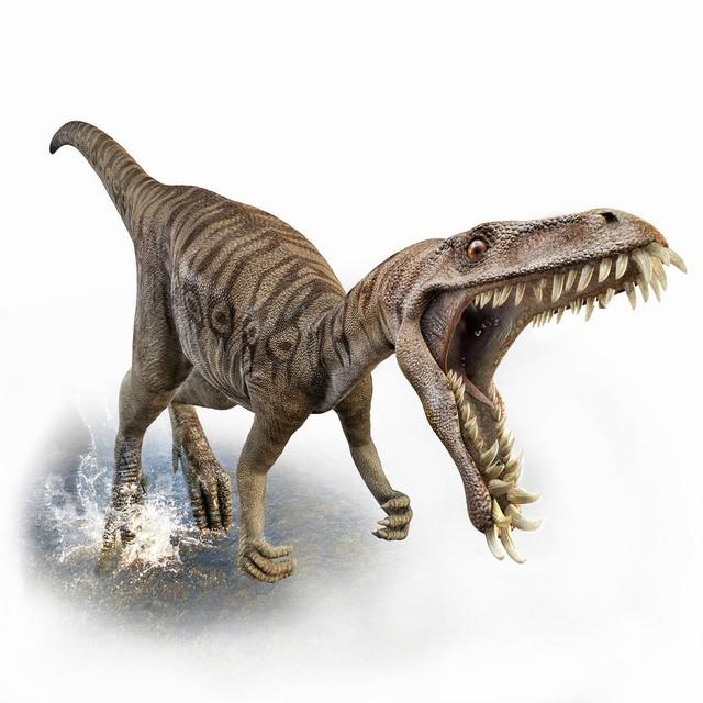 Top 5 điều kỳ thú về khủng long, điều cuối sẽ khiến bạn bất ngờ đấy - Ảnh 3.