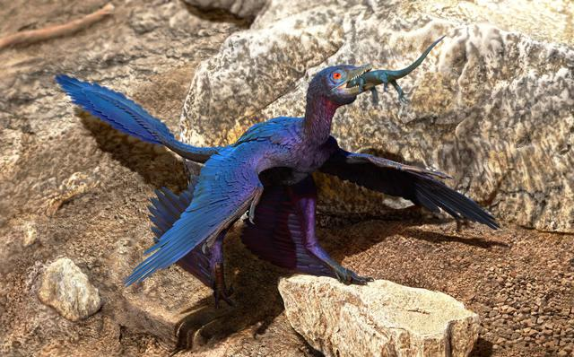 Top 5 điều kỳ thú về khủng long, điều cuối sẽ khiến bạn bất ngờ đấy - Ảnh 5.