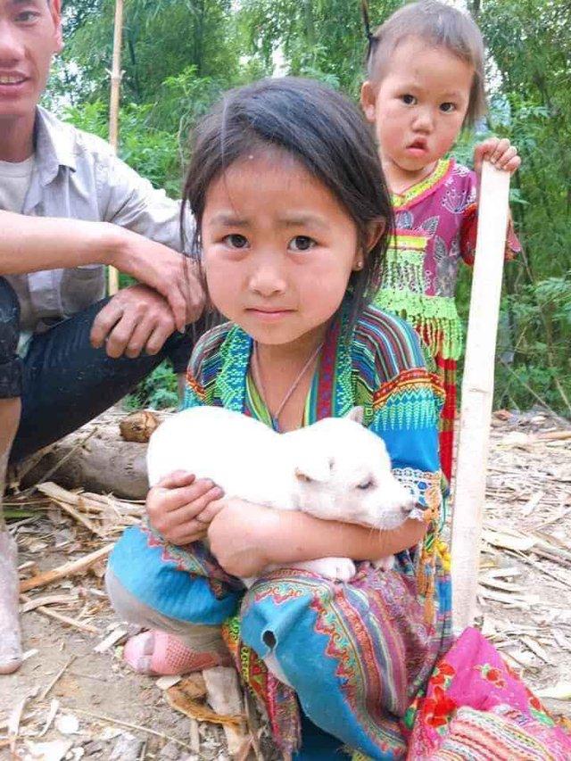 Bé gái vùng cao giữ chặt chú chó nhỏ không bán khiến dân mạng thương cảm - Ảnh 1.