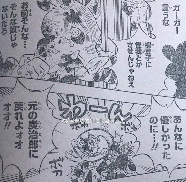 Kimetsu no Yaiba chương 202: Nezuko tìm đến nơi, muốn đưa thuốc biến Tanjirou thành người nhưng liệu có được? - Ảnh 2.