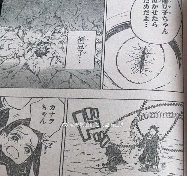 Kimetsu no Yaiba chương 202: Nezuko tìm đến nơi, muốn đưa thuốc biến Tanjirou thành người nhưng liệu có được? - Ảnh 8.