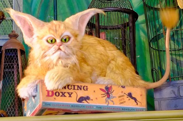 Harry Potter: Top 10 sinh vật huyền bí mà ai cũng muốn nuôi như thú cưng (P.2) - Ảnh 4.