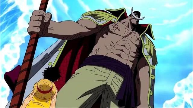 One Piece: Trở thành cướp biển mạnh thống trị Tân thế giới vì các Tứ Hoàng đều có mục tiêu của riêng mình - Ảnh 1.