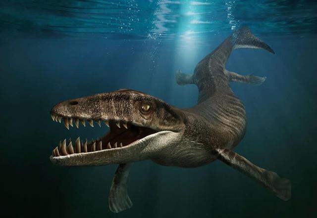 Cá sấu tiền sử dưới đại dương chỉ cần một cú đớp cũng có thể làm thủng bụng ngư long - Ảnh 1.
