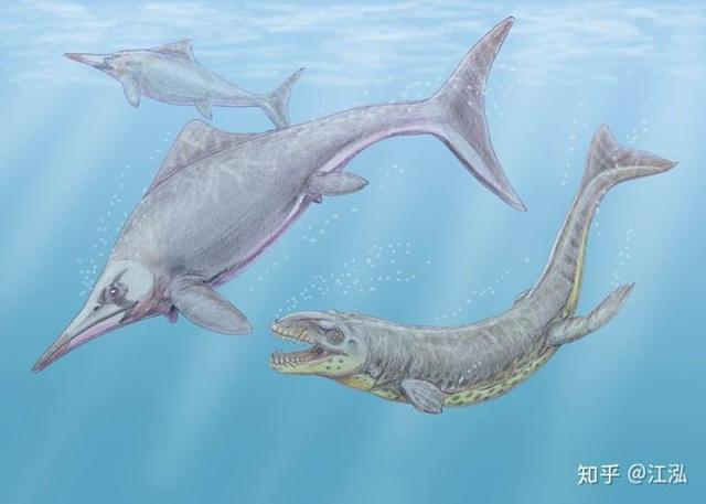 Cá sấu tiền sử dưới đại dương chỉ cần một cú đớp cũng có thể làm thủng bụng ngư long - Ảnh 12.