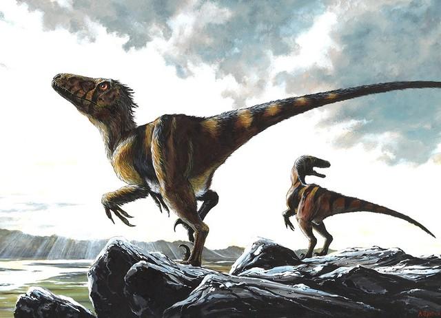 Tìm hiểu về Deinonychus: Loài khủng long sở hữu cú đá chết người - Ảnh 6.