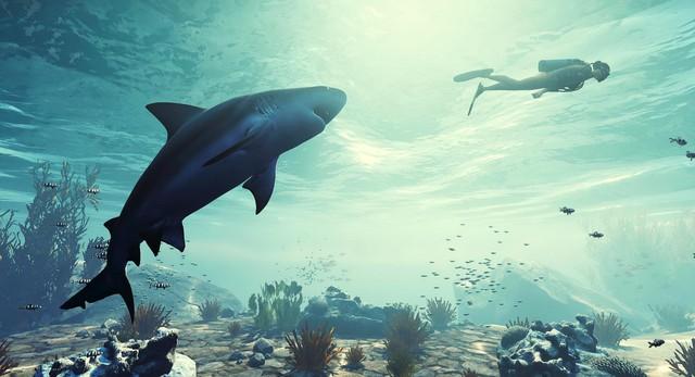 Xuất hiện tựa game giả lập cá mập đi tấn công mọi thứ, thậm chí cả cắn cáp quang - Ảnh 2.