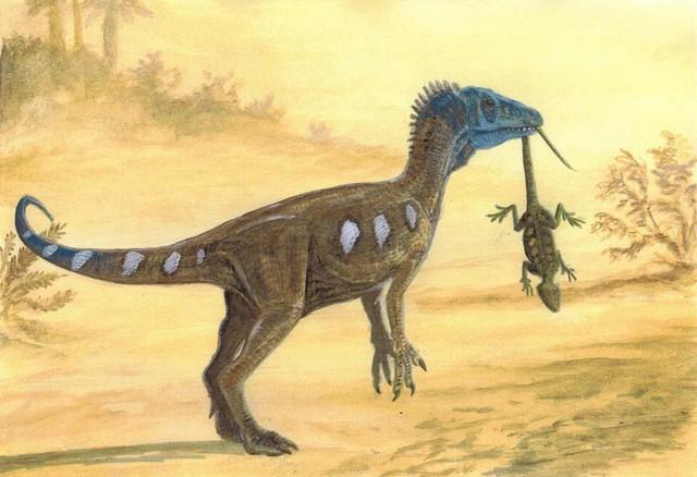 Top 10 điều có thể bạn chưa biết về khủng long, bạn đã biết được bao nhiêu? (P.2) - Ảnh 3.