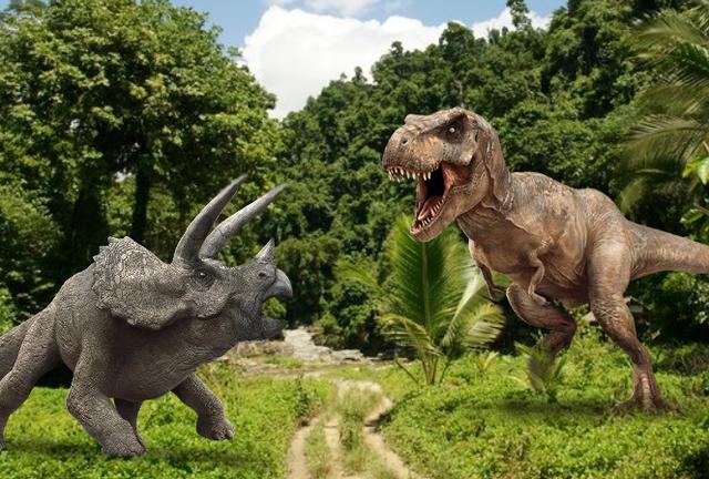 Top 10 điều có thể bạn chưa biết về khủng long, bạn đã biết được bao nhiêu? (P.2) - Ảnh 1.