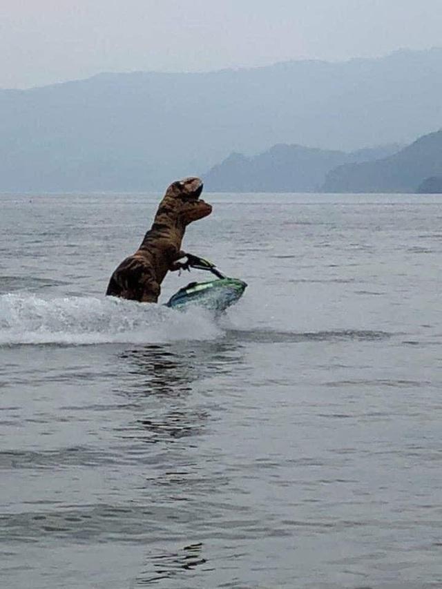 Cosplay khủng long bạo chúa đi chơi lướt sóng, nam thanh niên khiến cộng đồng mạng không khỏi ngỡ ngàng - Ảnh 2.