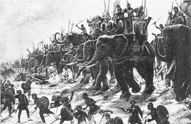 Người La Mã từng dùng lợn lửa để chiến đấu? - Ảnh 1.